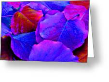 Bluish Purple And Pink Leaves Greeting Card