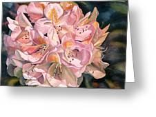 Blushing Pink Rhododendron  Greeting Card