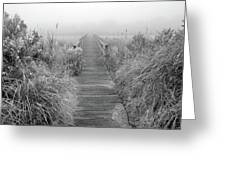 Boardwalk In Quogue Wildlife Preserve Greeting Card