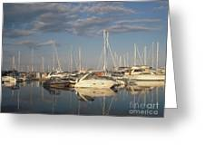 Harbor Cams Greeting Card