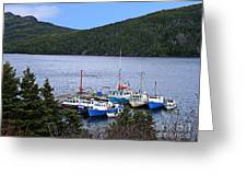 Boat Lineup Greeting Card