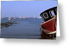Boat Moored In The Sea, Strangford Greeting Card