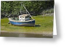 Boat On Banks Of Dee Greeting Card