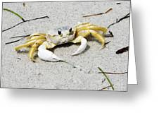 Boca Grande Crab Greeting Card