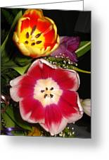 Bold Color Flowers Greeting Card by Jose Lopez