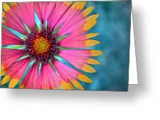 Boldness Greeting Card