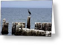 Bombay Beach Greeting Card