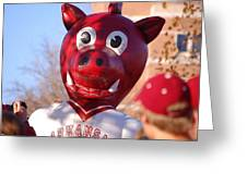 Boss Hog Greeting Card by Amy Glover Bryant