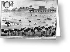 Boston Common, 1768 Greeting Card
