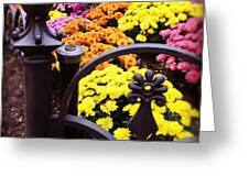 Boston Flowers Greeting Card