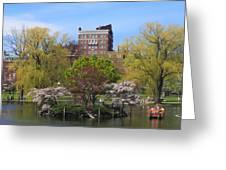Boston Public Garden Pond In Spring Greeting Card