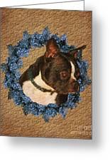Boston Terrier Love Greeting Card