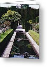 Botanical Reflections Greeting Card