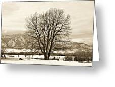 Boulder County Greeting Card