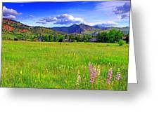 Boulder Park View Greeting Card