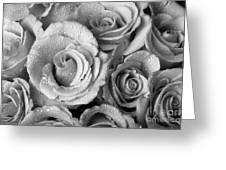 Bouquet Of Roses With Water Drops In Black And White Greeting Card