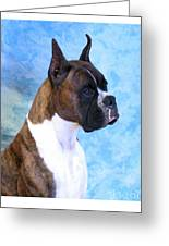 Boxer 13 Greeting Card