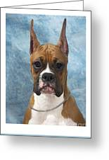 Boxer 155 Greeting Card