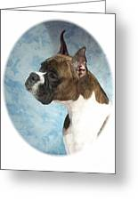 Boxer 816 Greeting Card