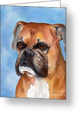 Boxer Greeting Card by Cherilynn Wood