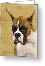 Boxer Greeting Card
