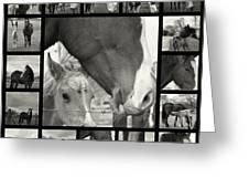 Boy Meets Horse Greeting Card