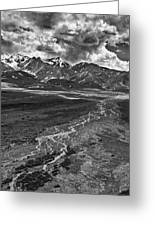 Braided River Greeting Card