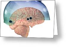 Brain In Skateboard Helmet Greeting Card