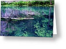 Branch And Reflections At Alley Spring State Park Greeting Card