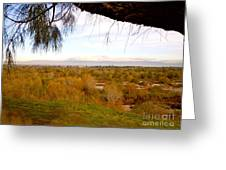 Branch Over River Bed Greeting Card