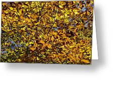 Branches Of Gold Greeting Card