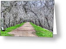Brazos Bend Pass Greeting Card