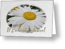 Bridal Shower Invitation - White Ox Eye Daisy Greeting Card