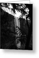 Bridalveil In Background Black And White Greeting Card