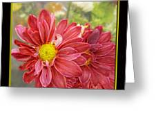 Bright Edges Greeting Card