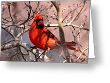 Bright Red Greeting Card