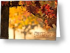 Brilliant Autumn Color Greeting Card
