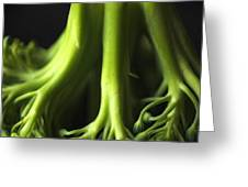 Broccoli Abstract Greeting Card