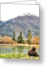 Brown Bear 207 Greeting Card