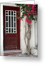 Brown Door In Greece Greeting Card