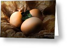 Brown Easter Eggs Greeting Card