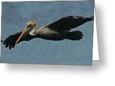 Brown Pelican Painterly Greeting Card