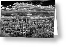 Bryce Canyon - Black And White Greeting Card