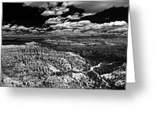 Bryce Canyon Ampitheater - Black And White Greeting Card