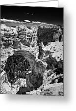Bryce Canyon Arch - Black And White Greeting Card