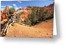 Bryce Canyon Canyon Greeting Card
