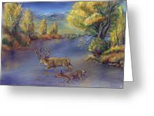 Buck And Doe Crossing River Greeting Card