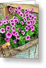 Bucket Of Blooms Greeting Card