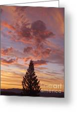 Buckhorn Mountain Sunrise Greeting Card by Daniel Pratt