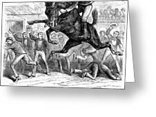 Bucking Mule, 1879 Greeting Card